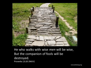 Proverbs (49)