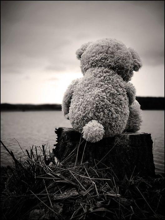 teddybearalone